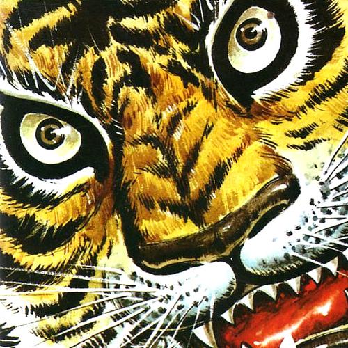 タイガーマスクの画像 p1_13