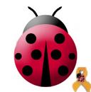 Project Ladybug Social Profile