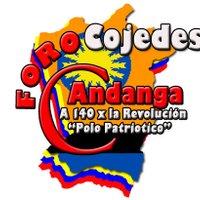 Foro C. COJEDES | Social Profile