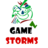 Gamezstorms