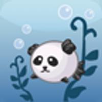 Aqua Pets | Social Profile