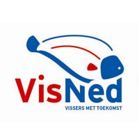 VisNed