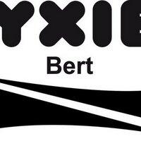 YXIEBert