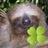 The profile image of snufkin_k