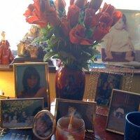 Sue Radford | Social Profile