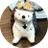 The profile image of otenki_trio