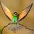 @BirdSeed_