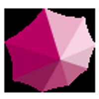 CSP comunicación | Social Profile