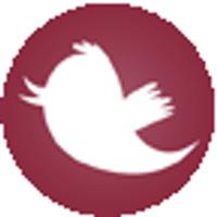 oira | Social Profile