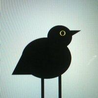 A. Crow | Social Profile