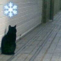 黒猫マイクロファンド | Social Profile