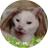 The profile image of p_q0e0p_q