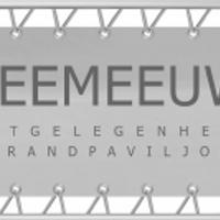 Zeemeeuw_net