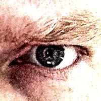Steve Whistler | Social Profile