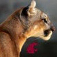 PuyallupCoug | Social Profile