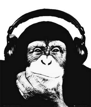Hudební Novinky