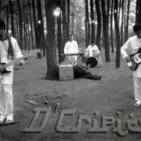 D'Cripics Band | Social Profile