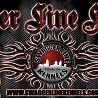 Swagger Line Kennels | Social Profile