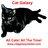 catgalaxy profile