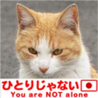 岩崎 唱 | Social Profile