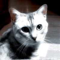 takashi TKNB | Social Profile