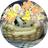 The profile image of aogirisyou