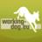 workingdog_eu