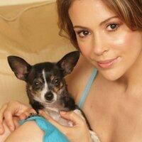 Lucy Milano    Social Profile