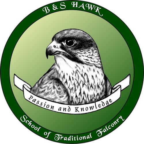 B&S Hawk