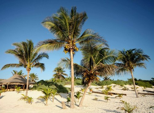 Pozemky Karibik