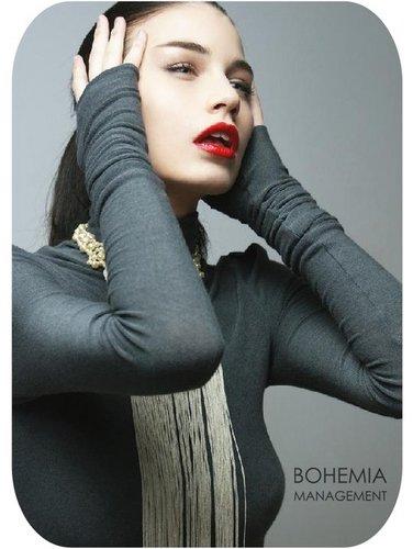 Bohemia Model