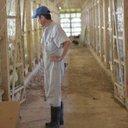 かねまる地頭鶏農場