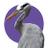 The profile image of yanagomi