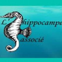 L'Hippocampe  | Social Profile