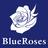 BlueRoses_news