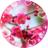 The profile image of kurosawa_r