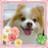 @rumi_takano
