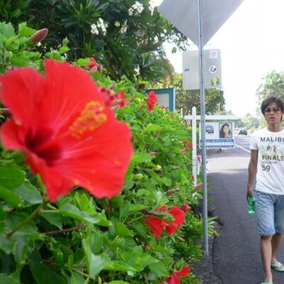 takashi miki | Social Profile