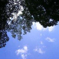 ナカフジサトミ   Social Profile