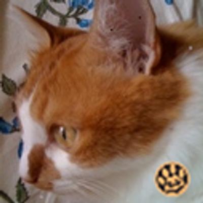 ま〜ちん | Social Profile