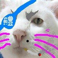 ずぼら~ | Social Profile