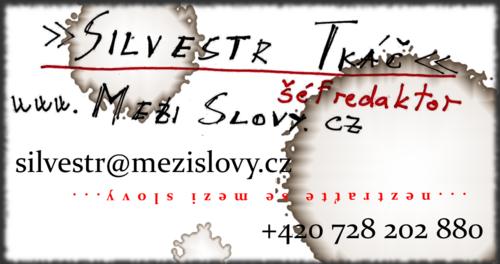 MeziSlovy.cz