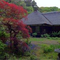 taichi(たいち) | Social Profile