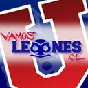 Photo of vleones's Twitter profile avatar