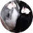 The profile image of xxfoolgirlxx