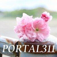 portal311 | Social Profile