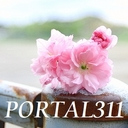 portal311