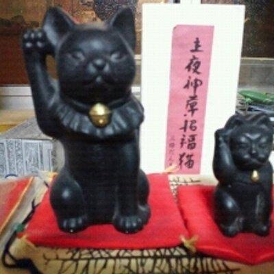 神使い猫「黒助」 | Social Profile