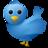 TwitrFollowKing profile