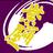 佛教大学よさこいサークル紫踊屋 | Social Profile